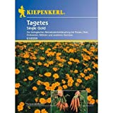 Nematoden-Killer - Tagetes 'Single Gold'
