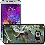 Just carcasa caliente estilo teléfono celular PC Funda rígida//m00139111Caterpillar mariposa oruga//Samsung Galaxy S6Edge (no para S6)