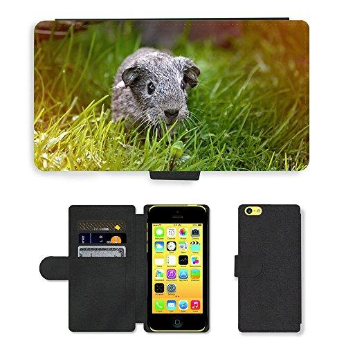 Just Mobile pour Hot Style Téléphone portable étui portefeuille en cuir PU avec fente pour carte//m00138765Guinée Pig jeunes animaux cheveux lisse//Apple iPhone 5C