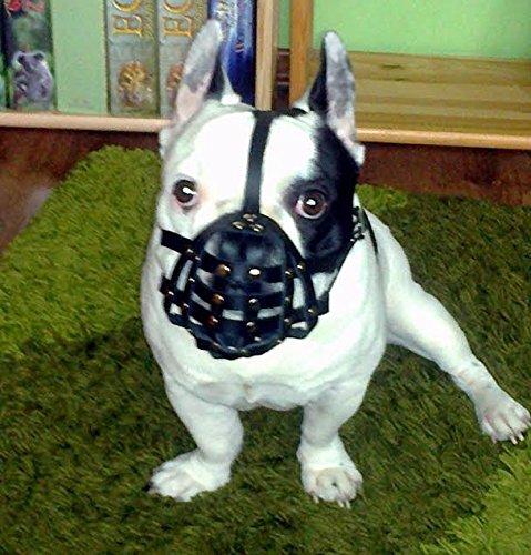 Museruola in pelle leggera, per bulldog francese