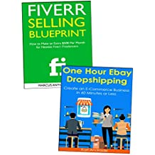 How to Run an Online Business: Freelancing on Fiverr or Dropshipping Through eBay (English Edition)