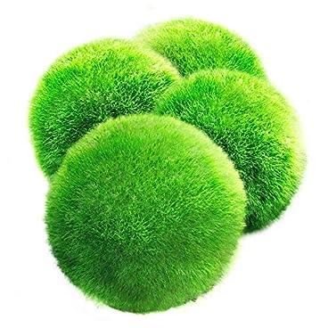 LUFFY Moss Balls – Aesthetically Beautiful & Create Healthy Environment – Eco-Friendly, Low Maintenance & Curbs Algae Growth – Shrimps & Snails Love Them