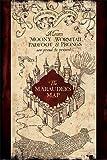 Harry Potter mappa del Malandrino Maxi Poster, multicolore