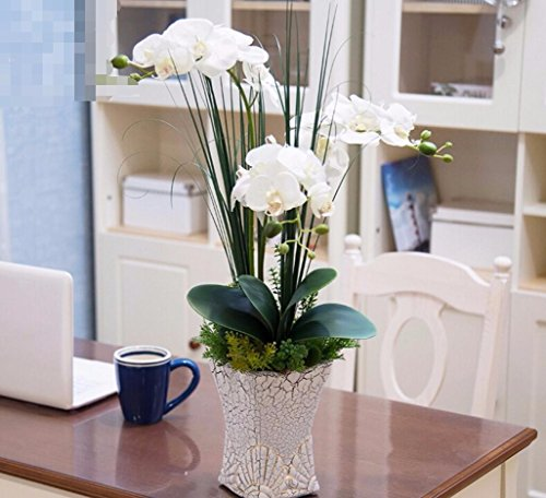 DSAAA Flores falsas con plantas en macetas de flores artificiales en el Salón decoración Blanco orquídeas