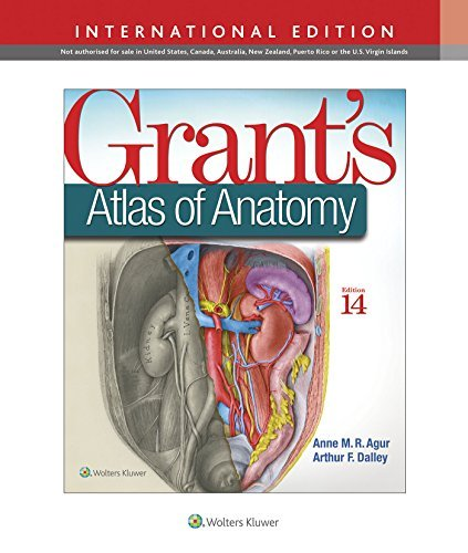 grants-atlas-of-anatomy-international-edition-by-anne-m-r-agur-2016-02-01