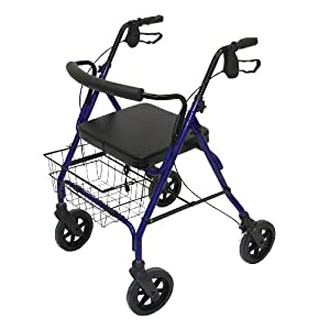 Patterson Medical Rollator mit Sitz, robust, blau