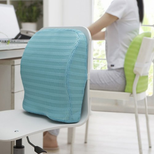 HealthSense Backrest Cushion with Memory Foam (SOFT SPOT - BC 21) - Ice Blue
