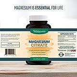 Citrato de Magnesio 400 mg 180 cápsulas por Phi Naturals