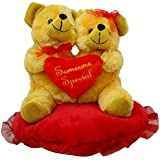 Prachi Toys Soft Toy Lovely And Attractive Brown Couple Teddy Bear On Blooming Red Heart Pillow (20CM)