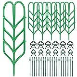 Hysagtek Lot de 38 Treillis pour Plantes grimpantes, 6 Supports d'intérieur, 12 Clips de Plantes, 20 Attaches pour Plantes pour tiges DYI, tiges de Vigne, légumes en Pot