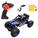 learn with fun-Crawler 4WD Rally R/C Car with Multi Function 1:20 Rechargeable Rock
