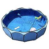 Petsfit Faltbares Hundeschwimmbad, Welpenbad, Freigarten Pool für Hunde und Welpen, Farbe Bule, Durchmesser 104cm x Höhe 30cm