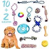 BLACK LION 10+2 Hundespielzeug, interaktives Kauspielzeug, Intelligenzspielzeug für große und kleine Hunde, beschäftigung für Welpen, Agility Dog Toys, Bälle, Seile, Knoten, Kauknochen, Zubehör, Hund