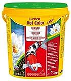 sera 07028 KOI Color Large (6 mm) 21 l - Farbfutter für langlebige, farbenprächtige Koi ab 25 cm