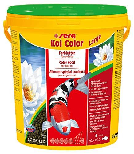 sera Koi Color Large (6 mm) ein Koifutter bzw. Farbfutter für ein langes, gesundes Koileben von Koi ab 25 cm mit Präbiotika für verbesserte Futterverwertung, geringere Wasserbelastung & weniger Algen