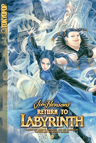 Return to Labyrinth: 3 by Chris Lie (Artist), Jake T. Forbes (26-May-2009) Paperback