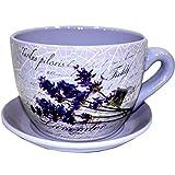 EuroTrade W LTD Garten Übertopf 2002406Dekorative Neuheit Terrakotta Tee Tasse und Untertasse Form Garten Terrasse Pflanzgefäß Pflanztopf Badewanne (groß Blumen violett), mehrfarbig, 30x 30x 19cm