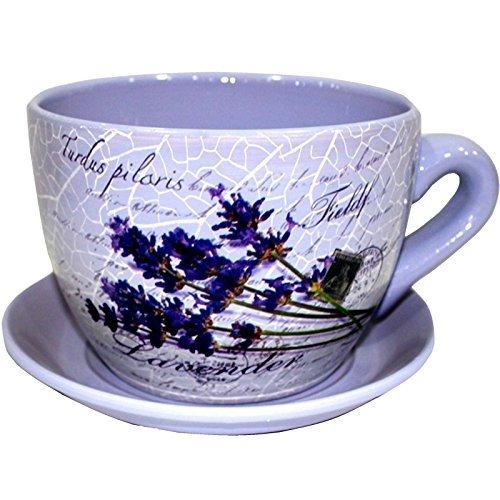 EuroTrade W LTD Garten Übertopf 2002406Dekorative Neuheit Terrakotta Tee Tasse und Untertasse Form Garten Terrasse Pflanzgefäß Pflanztopf Badewanne (groß Blumen violett), Mehrfarbig, 30x 30x 19cm Eine Untertasse
