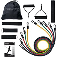 TOPELEK Exercise Resistance Bands Set, [Total 100 lbs] Fitness Resistance Bands Set Best Women Men 5 Fitness Tubes/Handles/Door Anchor/Ankle Straps/Carrying Pouch/Workout Guides Protective Cover