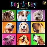 2014 Dog-A-Day Wall Calendar by TF Publishing (2013-06-13)