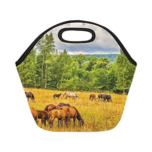 Borsa da pranzo in neoprene isolata a cavalli Campo da pascolo a cavallo in grandi dimensioni Borse a spalla termica riutilizzabile a sacco termico per scatole