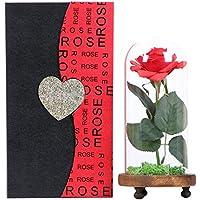 """Langxun Silk Rose """"Bella y bestia"""" Flor artificial en cúpula de vidrio y base de madera cubierta por Real Moss con caja de regalo para regalo de San Valentín"""