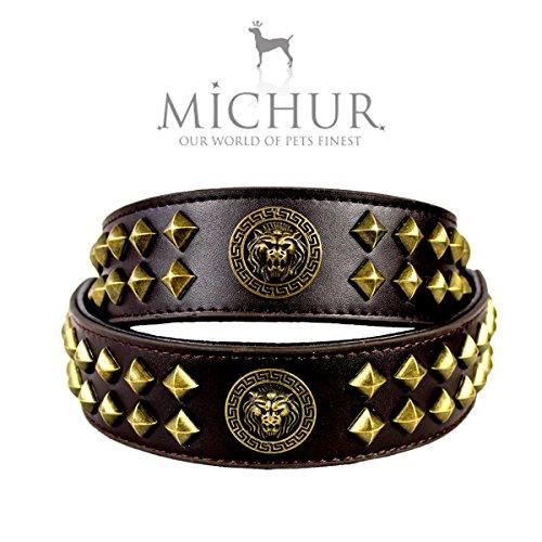 hundeinfo24.de MICHUR DIEGO2.0, Hundehalsband, Lederhalsband, Halsband, LEDER, BRAUN, ca. 4cm BREIT, NIETEN & LÖWENEMBLEM in ANTIKGOLD- optik, in verschiedenen Größen erhältlich