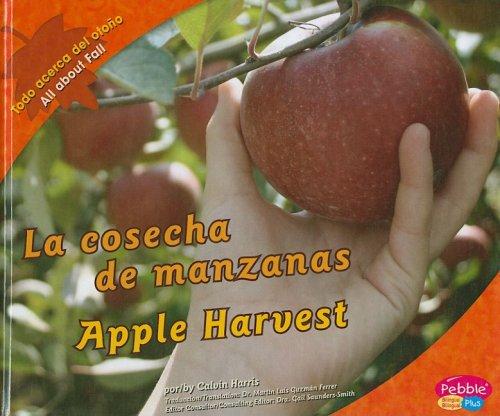 La cosecha de manzanas/ Apple Harvest (Pebble Plus Bilingual: Todo Acerca del Otono/ All About Fall) por Calvin Harris