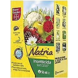 BAYER Insecticida éxito Ml. 50 jardín orgánico y Jardín