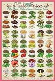 Küche - Kräuter & Gewürze - Poster Plakat Druck - Größe 61x91,5 cm + Wechselrahmen, Shinsuke® Maxi Kunststoff rosa, Acryl-Scheibe