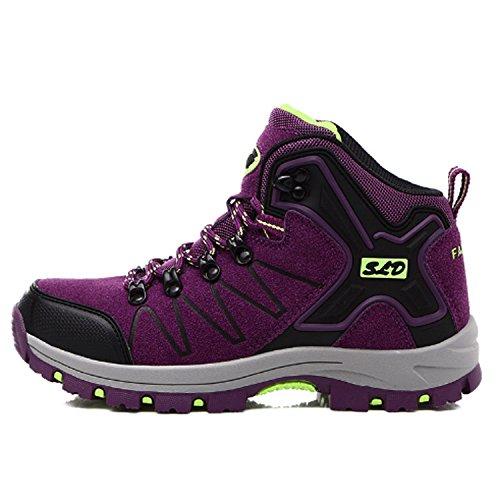 Scarpe da ginnastica di scarpe da ginnastica di scarpe da ginnastica delle nuove scarpe da corsa delle scarpe da ginnastica all'aperto Scarpe di allenamento sportive di autunno ed in inverno Viola