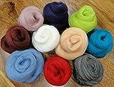 Filzwolle - 10 schöne Farben super zum Trockefilzen und Naßfilzen, ca. 100gr - 10 Knäuele -