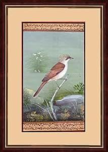 Splendid Indian Art période moghole oiseau faucon crécerelle faucon peinture miniature indienne sur le vieux papier fait à la main avec des couleurs naturelles