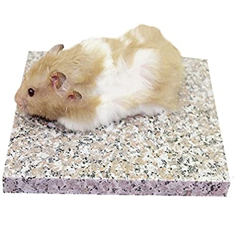 Emours Hamster chinchilla refroidisseur Cool Granite Pierre Petits Animaux Habitat