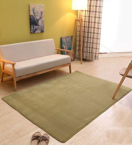 ZENGAI-Läufer Teppich Flur Einfache Moderne Haushalt Starke Rechteckige Koralle Velet Teppich, Maschinen Waschbar, Wohnzimmer Teppich, Matte, 10 Farben Optional (Color : 9, Size : 0.8 * 2.0m) -