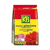 KB–Engrais Géraniums 800g
