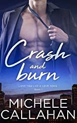 Crash and Burn: Volume 1 (Love You Like A Love Song) by Michele Callahan (2016-01-08)
