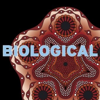 Biological (Book & CD Rom)