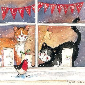 Alex Clark Charity Weihnachtskarten Katzen Fenster 5Stück + 1GRATIS Alex Clark Karte mit jeder (Katze Weihnachtskarten)