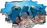 Delfine Meer Delfin Wandtattoo Wandsticker Wandaufkleber C0683 Größe 70 cm x 110 cm