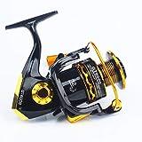 Igspfbjn Mulinello da Pesca 11 ASSE con liquidazione Metal Head Mulinello da Pesca Rocker Spinning Reel Fishing Reels (Specification : 1000)