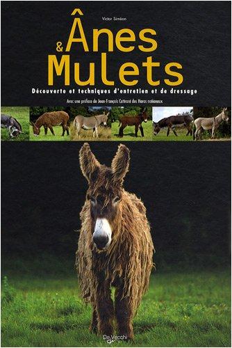 Anes et mulets par Victor Siméon