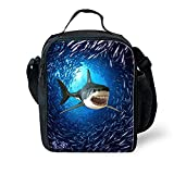 Best Thermos Lunch Boxes For Boys - Showudesigns Shark Pattern Blue Portable Lunch Boxes Food Review