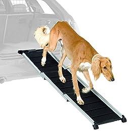 Gelenkschonend: Die besten Hunderampen fürs Auto
