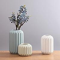 Suchergebnis auf Amazon.de für: dekoration wohnzimmer - Vasen ...
