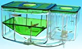 AQUARIUM AUTOMATIC CIRCULATING BREEDING HATCHERY