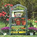 Blackspur Mini Gewächshaus, 3Regalböden von Hamble Distribution ltd bei Du und dein Garten