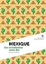 Mexique : La révolution sans fin par Steels
