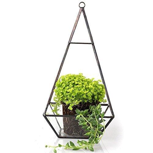hanging-modern-pyramid-glass-geometric-terrarium-tabletop-succulent-plant-box-planter-fern-moss-tall
