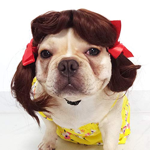 ZMMApet - Kopfschmuck Hund perücke Katze lustig Stil Beine, kleine Drache Frau explosiven Kopf zopf Hoax - projekte,Bild - Farbe